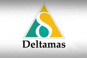 logo deltamas