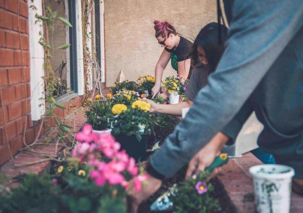 cara membuat taman kecil di depan rumah dengan mudah
